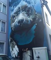Bart Smeets - onderwaterhond