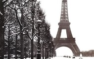 Cold Paris