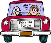 Reason why students should drive