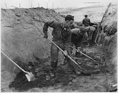 Dig boys dig
