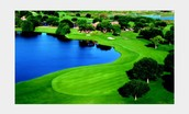 Flordia golf course
