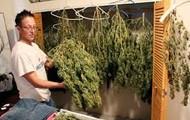 Finished Marijuana