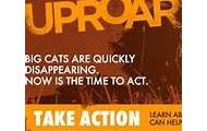 Causeanuproar.org