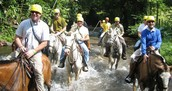 Experience the rainforest on horseback.