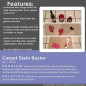 Carpet Stain Buster