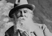 The class begins with Walt Whitman: