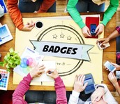 Interested in Using Online Badges?