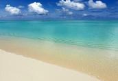 Type of Beach