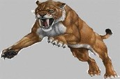 Saber Tooth Tiger (Smilodon)