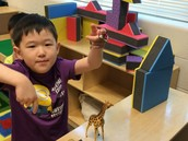 Building a Zoo for our animals!