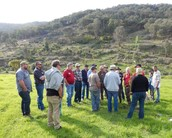Mitta Valley Landcare Group now has 4 Interest Groups Established: