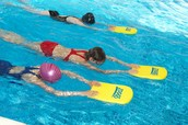 Lakeland Community Swim Program