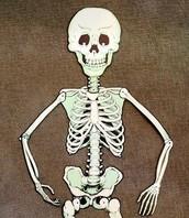 Mr. Bone's Relay Race!