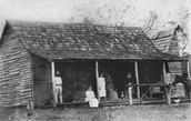 A bark hut