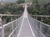 גשר החבלים (אזהרה: לא לבעלי לב חלש)