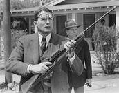 Atticus Finch Shoots Dog