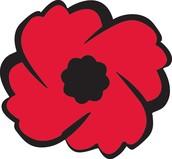 Royal Canadian Legion Poppy Trust Fund Bursary