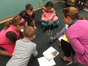 3rd Grade Discussion Groups