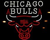 About the Chicago Bulls