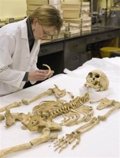 What is a Forensic Anthropologist's Salary?