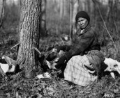 By the time the Ojibwe finished making Maple Sugar,
