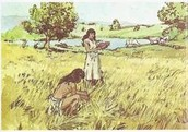 More information of the Neolithic revolution