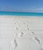Bahamas (2011)