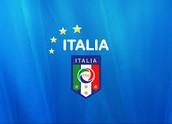 Italys international soccer team logo