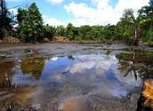 Oil related pollution in Venezualea