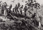 Slavery in Africa (Specifically Guinea)