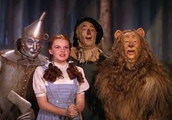 a take on the wizard of oz