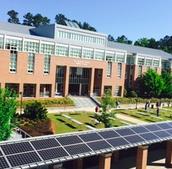 Lovett's Walkway Solar Panels