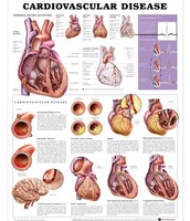 All About Heart disease and why its bad and what it does