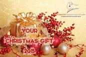 CHRISTMAS Gift 2015