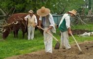 Raising and farming