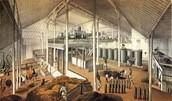 """""""Sugar Factory, Plantation Asuncion, Cuba, 1857"""""""