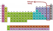 What are the Halogens?