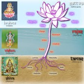 What do Hinduism call their Holy Book or Scriptures and how is their religious leadership organized?