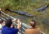 Day 3 Private airboat rides in the Everglades