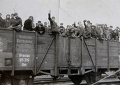 Prisoners From Concentration Camps Going Home