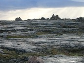 Rocky Mudflats