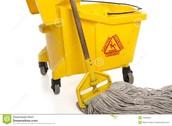 wet mop and bucket