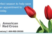 Lenape M.S. Blood Drive - Monday, April 21