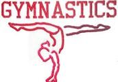I love gymnastics.