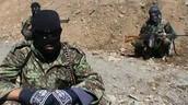 ISIS & Taliban