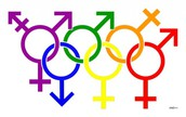 """Gender Identity"" discrimination laws"