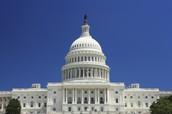 About the legislative Branch