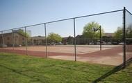 Corte Grande De Basketball