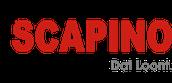 Branchewerkstuk presentatie Scapino