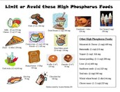 Foods high in phosporus